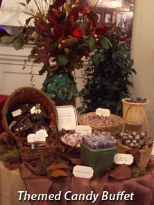 Themed-Candy-Buffet
